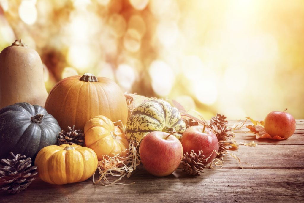 Thanksgiving, fall or autumn greeting background with pumpkin on table